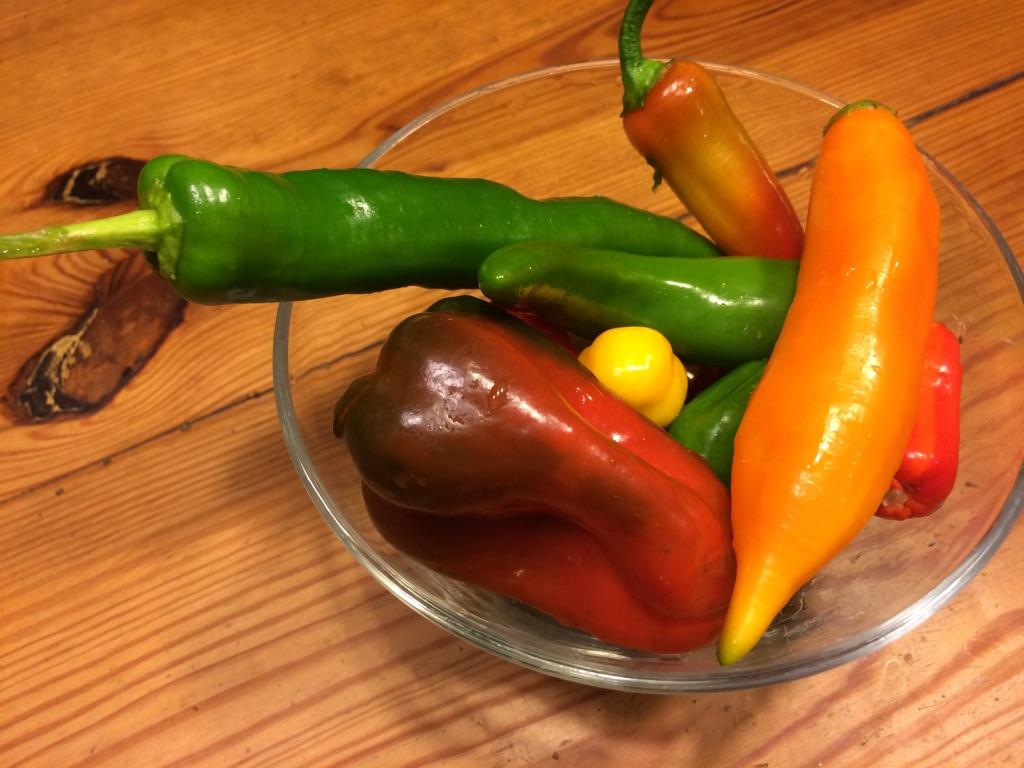 Peppers from MV Greenhouse